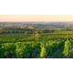 Gagnez un séjour oenologique pour 2 en Bourgogne