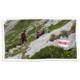 """Gagnez un bon d'achat CAS de CHF 100.- et le livre """"Les Cabanes du Club Alpin Suisse"""" de CHF 68.-"""